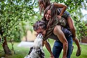 """English Setter """"Rudy"""" spielt am 10.07. 2018 mit seinen Freunden Michael, Lucia und Rosalie im Garten von Lysa nad Labem, Tschechischen Republik.  Rudy wurde Anfang Januar 2017 geboren."""