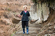 Woman carrying baskets from terrace fields of Longsheng by mountian village of Ping An, Guilin, China