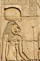 Egypte, Haute Egypte, croisiere sur le Nil entre Louxor et Assouan, Kom Ombo, temple de Sobek, le dieu-crocodile, bas relief de la deesse lionne Skhmet // Egypt, Nile valley, cruise on the Nile river between Luxor and Aswan, Kom Ombo, Temple of Sobek and Horus, Sekhmet lion goddess