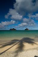 Palm tree shadows on Lanikai Beach, Mokulua Islands in background, Oahu, Hawaii