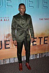 Mahershala Ali attends the premiere of HBO's 'True Detective' Season 3 at Directors Guild of America on January 10, 2019 in West Hollywood, CA, USA. Photo by Lionel Hahn/ABACAPRESS.COM