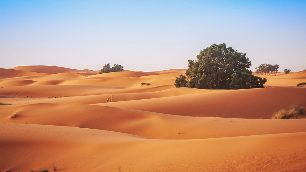 Sahara dunes. Fascinating and daunting to look out into the largest hot desert on the planet (Arctic and Antarctic being larger, cold deserts), its surface area of 9,400,000 square kilometres (3,630,000 square miles) including the Libyan Desert and covers about 1/4 of the African continent it is comparable to the land areas of China or the United States.