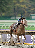 Curlin wins the Breeders Cup 2007 World Championships