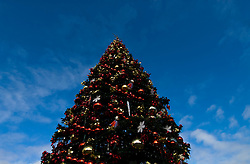 California: San Francisco Christmas celebration, Pier 39. Christmas tree and ornanents. Photo copyright Lee Foster.  Photo # 32-casanf76014