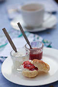 Mcc0028781 . Daily Telegraph..Features..Scones served with Jam and Cream..A tea party held at a friends home in New Delhi by food blogger Pamela Timms, wife of Daily Telegraph correspondent Dean Nelson ....Delhi 23 January 2011..