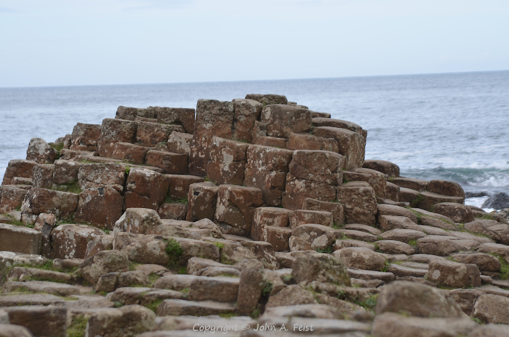 The characteristic stones and small plants growing between them.  Giant's Causeway, County Antrim, Northern Ireland