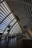 Avignon TGV Station was designed under the direction of Jean-Marie Duthilleul of AREP, the station development arm of SNCF. Duthilleul is a  French architect and engineer who was in charge of the  renovation project of the French railway stations SNCF, particulrly the newer TGV stations.  Jean-Marie Duthilleul has revolutionized design and function of stations by treating them as places for people to meet up and living spaces.  That is to say, the transport networks are becoming real public spaces similar to the role that churches once played in public life.  Indeed, Duthilleul has renovated quite a few churches in France and has taken this experience of public space into the realm of railway stations.