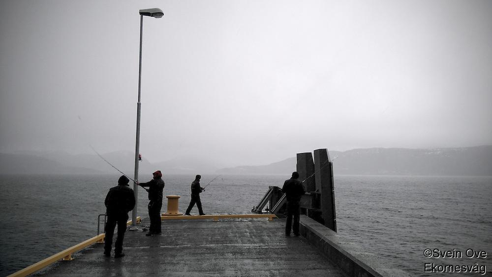 Kaifiske i 2°C, styrtregn og vind.<br /> Foto: Svein Ove Ekornesvåg