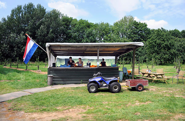 Nederland, Randwijk, 30-6-2012In een boomgaard, kersenboomgaard, worden kersen verkocht. Kopen bij de boer, tuinder.Foto: Flip Franssen