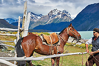 Horse and Gaucho at Estancia Helsingfors in Patagonia. Image taken with a Nikon D3s camera and 24-120 mm f/4  lens (ISO 200, 66 mm, f/5.6, 1/640 sec)