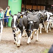 NLD/Soest/20160321 - Sven Kramer start het boerenseizoen 2016,