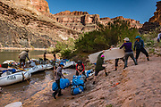 Unloading rafts at Hundred and Twenty Mile Camp at Colorado River Mile 120.3 (also named Michael Jacobs for an old guide who died here). Day 8 of 16 days rafting 226 miles down the Colorado River in Grand Canyon National Park, Arizona, USA. For this photo's licensing options, please inquire at PhotoSeek.com. .