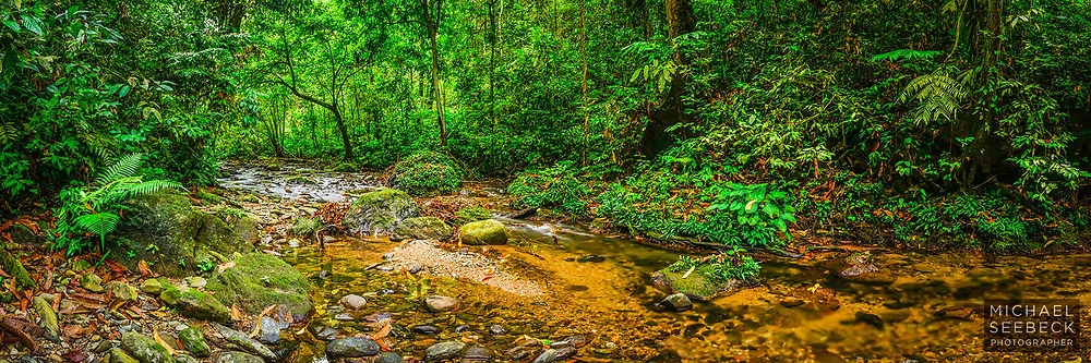 A beautiful small stream deep within the remaining rainforests of Sumatra. Captured during soft early morning light.<br /> <br /> Limited Edition Print of 125