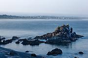 USA, Oregon, Newport, Yaquina Head, NLCS, a rock with seabirds and Newport, Digital Composite, HDR