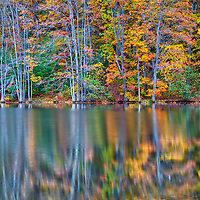 New England fall foliage reflection in Dean Park Pond at Dean Park in Shrewsbury, Massachusetts. <br />