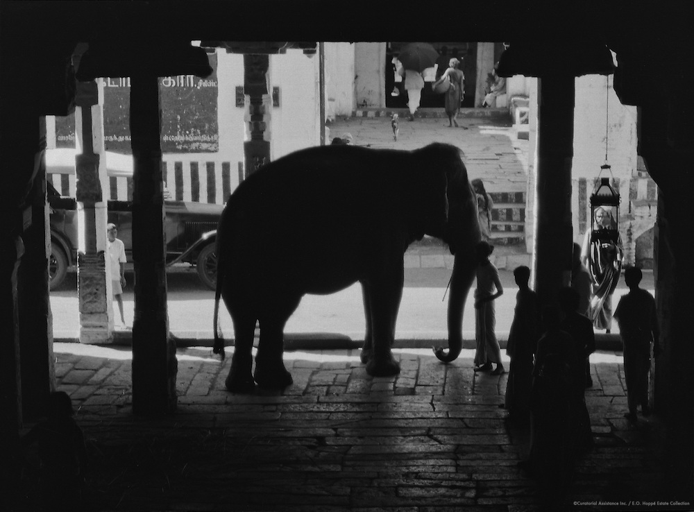 Entrance to Rock Temple with Elephant, Tiruchirappalli, India, 1929
