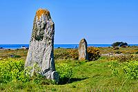 France, Morbihan (56), Presqu'île de Quiberon, la côte sauvage, menhir dit de Jean et Jeannette sur la presqu'île de Quiberon // France, Morbihan (56), Quiberon peninsula, the wild coast, Menhir says by Jean and Jeannette on the peninsula of Quiberon