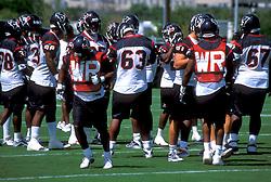 Stock photo of Houston Texans Practice on the field