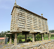 An horreo, a traditional north-western Spanish  grain store in the Galician style, This granary is made from stone and is raised from the ground on mushroom-shaped stone pillars, staddle stones.  It has a tiled roof and, as tradition is required the roof is decorated with a stone cross. Muxia, Galicia, Spain. 27Jun12.