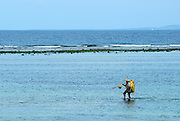fisherman walking in shallows, open ocean and reef in background. Sanur Beach, Bali, Indonesia.