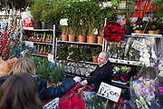 A stall holder hands over change to a happy customer. Columbia Road flower market is held every Sunday and it attracts shoppers from afar. The huge variety in plants and flowers makes it a popular place to shop and the banter between the traders and the quick deals there is to be made makes it a very entertaining place to go.