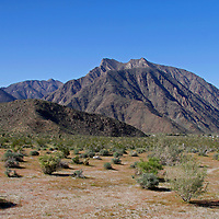 USA, California, San Diego County. Desert landscape and Indian Head Mountains at Anza-Borrego Desert State Park.