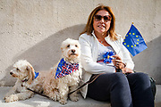 A woman with a European flag and two dogs prepares to join pet owners to take part in an anti Brexit Wooferendum rally on October 07, 2018 in London, England to protest against Britain leaving the European Union.