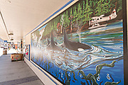 A mural of Orca whales on the side of a building in Petersburg, Mitkof Island, Alaska. Petersburg settled by Norwegian immigrant Peter Buschmann is known as Little Norway due to the high percentage of people of Scandinavian origin.