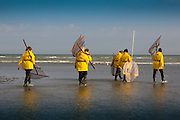 Shrimpfisher-women, wade out to sea with their nets.