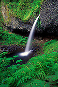 Image of a waterfall along the Historic Columbia River Highway, Oregon, Pacific Northwest by Randy Wells
