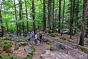 Wodospad Szklarki (woj. dolnośląskie), 26.07.2013. Ścieżka przyrodnicza do Wodospadu Szklarki w Karkonoskim Parku Narodowym.