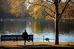 © Licensed to London News Pictures. 29/11/2016. London, UK. A woman enjoys the view of the Serpentine Lake in Hyde Park, London on a frosty morning as temperatures in the capital drop as low as -3C on Tuesday, 29 November 2016. Photo credit: Tolga Akmen/LNP