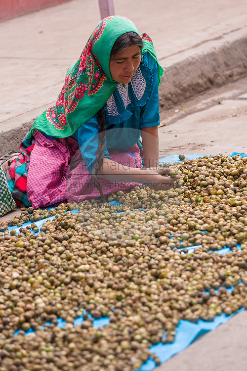 A Zapotec woman in traditional costume selling Tomatillo at the Sunday market in Tlacolula de Matamoros, Mexico. The regional street market draws thousands of sellers and shoppers from throughout the Valles Centrales de Oaxaca.