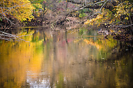 calm waters of Yellow Breaches creek