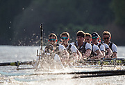 Mortlake/Chiswick, GREATER LONDON. United Kingdom. 2017 Men's Boat Race winners OUBC held over,The Championship Course, Putney to Mortlake on the River Thames.<br /> <br /> Crew: Oxford, Bow: William Warr, 2: Matthew O'Leary – USA, 3: Oliver Cook, 4: Joshua Bugaski, 5: Olivier Siegelaar – NED, 6: Michael DiSanto – USA, 7: James Cook, Stroke: Vassilis Ragoussis, Cox: Sam Collier <br /> <br /> <br /> Sunday  02/04/2017<br /> <br /> [Mandatory Credit; Intersport Images]