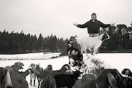 Dean Hanmer portrait, sculptor on rock with goats