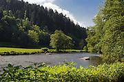 Ilz, Ilztal bei Kalteneck, Vorderer Bayerischer Wald, Bayern, Deutschland | Ilz valley near Kalteneck, Bavarian Forest, Bavaria, Germany