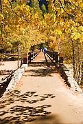 Swinging Bridge and fall color, Yosemite Valley, Yosemite National Park, California