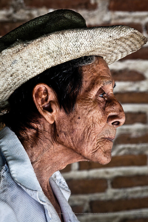 Saving Mexican criollo cocoa (Royal Cocoa of Soconusco).<br /> <br /> Villa Comaltitlán, Mexico. Don Fila is 80 years old. Most of the cocoa farmers of Soconusco are elderly.  Unfortunately there is no sign that the younger generation wish to ensure the survival of the crop.