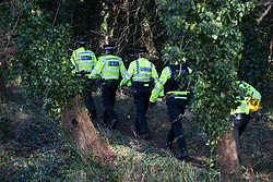 Denham, UK. 11 February, 2020. Thames Valley Police officers walk through woodland to arrest an environmental activist from Extinction Rebellion who had been 'slow walking' in front of a large truck delivering a JCB forklift truck to a HS2 site. Contractors working on behalf of HS2 are rerouting electricity pylons through a Site of Metropolitan Importance for Nature Conservation (SMI) in conjunction with the high-speed rail link.