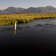 Owens River near Benton Crossing and Mammoth Lakes, California