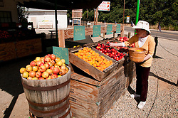 Centreville Fruit Station, Roadside produce stand, Centreville; between Fresno and Kings Canyon; California, USA.  Photo copyright Lee Foster.  Photo # california121580