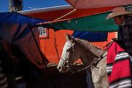 PROJECT | Streets of Guanajuato II