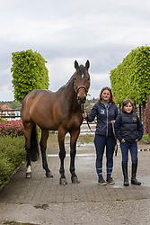Block Katrien, Jasper, Poirrot HWS<br /> Horse World Stables - Essen 2021<br /> © Hippo Foto - Dirk Caremans<br /> 15/05/2021