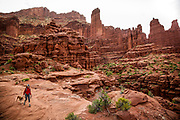SHOT 5/7/16 10:16:56 AM - Meredith Birkett of Denver, Co. hikes with Tanner, an 11 year-old male Vizsla, at the Fisher Towers Trail just outside of Moab, Utah. The Fisher Towers hiking trail follows an easy path to an overlook of these sandstone rock formations. The is a popular spot for rock climbers and hikers. Moab is a city in Grand County, in eastern Utah, in the western United States. Moab attracts a large number of tourists every year, mostly visitors to the nearby Arches and Canyonlands National Parks. The town is a popular base for mountain bikers and motorized offload enthusiasts who ride the extensive network of trails in the area.  (Photo by Marc Piscotty / © 2016)