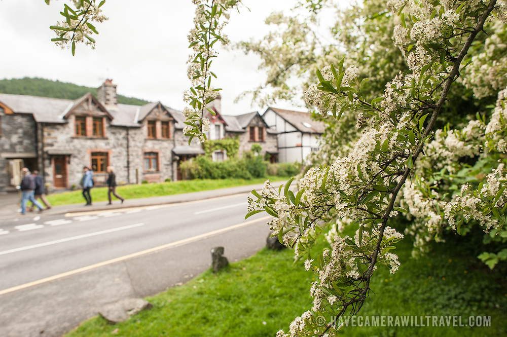 Betws-y-Coed Snowdonia Road. A tree with flowers is in the foreground, with stone houses in the background. Betws-y-Coed, in the heart of Snowdonia, is a popular destination for hikers heading into the surround countryside and mountains.