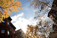 """9 Novembre, 2008. Brooklyn, New York.<br /> <br /> I brownstones qui presenti a Park Slope, Brooklyn, NY, sono una tipo di costruzione molto diffuso a New York. Park Slope, spesso definito dai newyorkesi come """"The Slope"""", è un quartiere nella zona ovest di Brooklyn, New York, e confinante con Prospect Park.  Park Slope è un quartiere benestante che ha il maggior numero di nascite, la qualità della vita più alta e principalmente abitato da una classe media di razza bianca. Per questi motivi molte giovani coppie e famiglie decidono di trasferirsi dalle altre municipalità di New York a Park Slope. Dal punto di vista architettonico, il quartiere è caratterizzato dai brownstones, un tipo di costruzione molto frequente a New York, e da Prospect Park.<br /> <br /> ©2008 Gianni Cipriano for The New York Times<br /> cell. +1 646 465 2168 (USA)<br /> cell. +1 328 567 7923 (Italy)<br /> gianni@giannicipriano.com<br /> www.giannicipriano.com"""