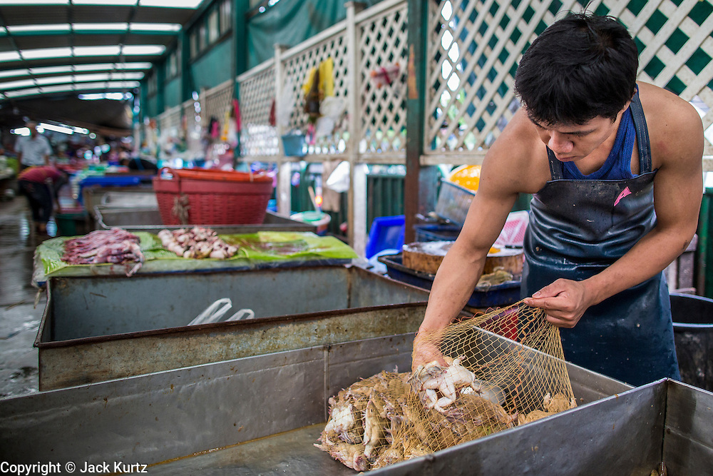 """03 OCTOBER 2012 - BANGKOK, THAILAND:  A frog vendor sorts frogs in Khlong Toey Market in Bangkok. Thais eat frogs. Khlong Toey (also called Khlong Toei) Market is one of the largest """"wet markets"""" in Thailand. Thousands of people shop in the sprawling market for fresh fruits and vegetables as well meat, fish and poultry every day.       PHOTO BY JACK KURTZ"""