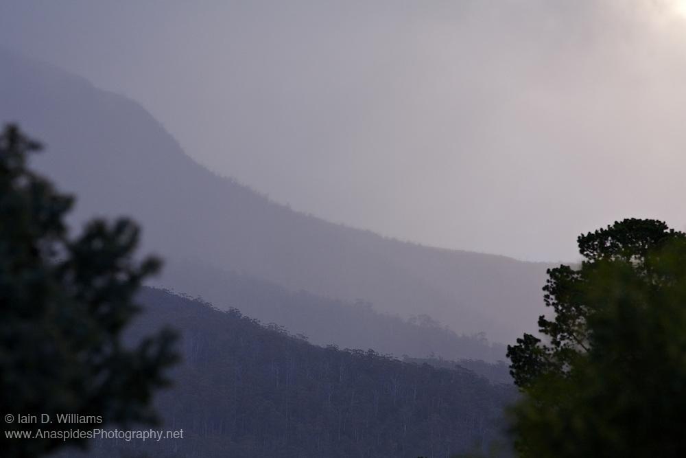 Fog and Mist, Mount Wellington - Tasmania