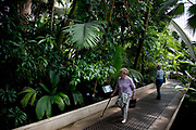 The Palm House. Built between 1844 and 1848, this victorian iron structure was designed to be a scientific, hi-tech research laboratory for palm trees, from which we get all sorts of useful crops, textiles, gums and other chemicals. The Royal Botanic Gardens, Kew, usually referred to simply as Kew Gardens, are 121 hectares of gardens  and botanical glasshouses between Richmond and Kew in southwest London, England. It is an internationally important botanical research and education institution with 700 staff, receiving around 2 million visitors per year.
